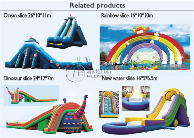 Large Size Commercial Inflatable Water Slides , Bouncy Pirate Ship Water Slide 1